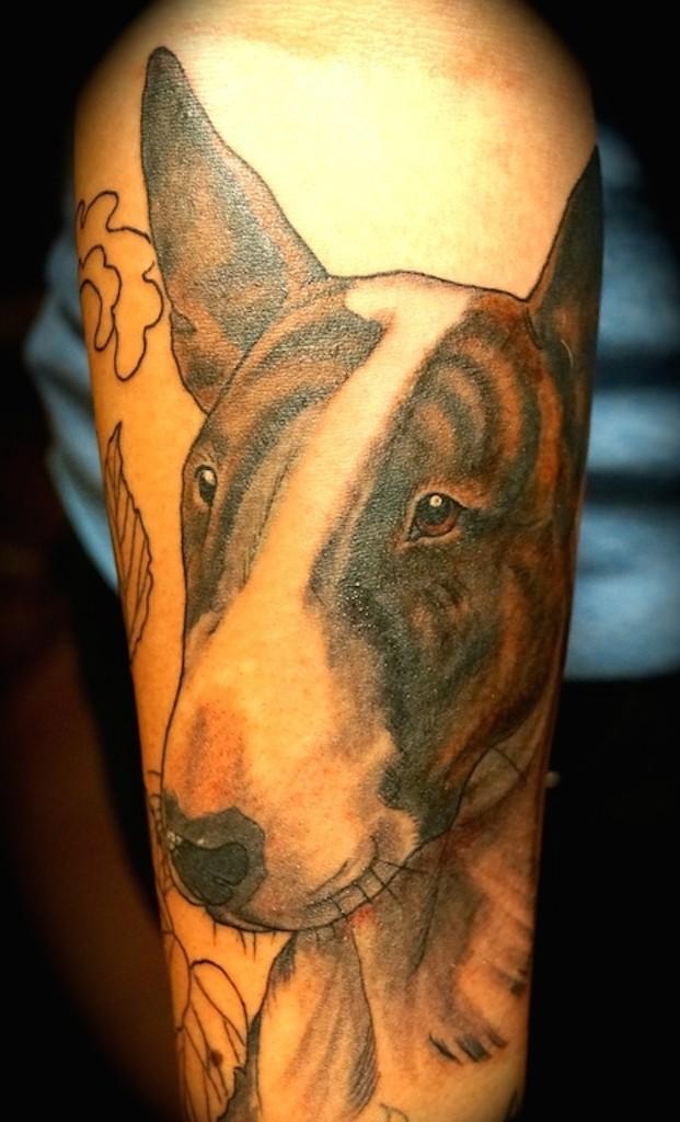 Ziguri#tattoo#berlin#schöneberg#hundekopf#bullitattoo#bullterrier#